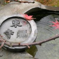 大本山東福寺塔頭の願成寺の境内にて