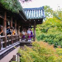 東福寺の通天橋から鳴り響く山伏の法螺貝の音